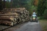 Trasporto legname